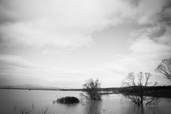Vloed - een natuurverschijnsel Gemorst meer Stock Foto