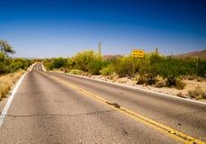 Vloedwaarschuwingsbord in Sonora-Woestijn Stock Fotografie