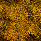 Vloeibaar goud Stock Afbeelding