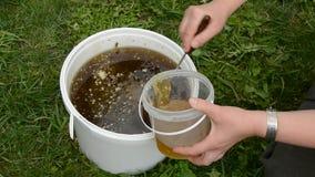 Vloeibare honing in emmer en vrouwenhanden stock videobeelden