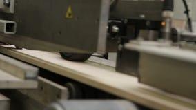Vloerplankproductie in de fabriek stock footage