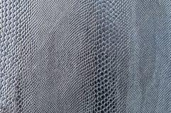 Vlotte grijze slanghuid met een distinctief natuurlijk patroon stock foto's