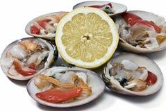 Vlotte tweekleppige schelpdieren om met citroen te eten Royalty-vrije Stock Foto's