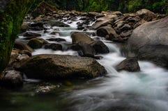 Vlotte wateren in rivier in het meest forrest royalty-vrije stock foto