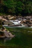 Vlotte wateren in rivier in het meest forrest stock foto