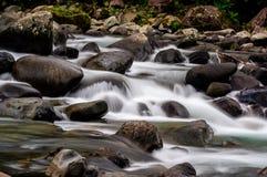 Vlotte wateren in rivier in het meest forrest stock fotografie