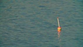 Vlotter op het water die op de beet wachten stock footage