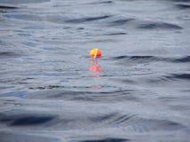 Vlotter op water Stock Foto's