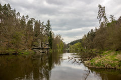 vltava för sikt för brocharles tjeckisk praha flod Vår Royaltyfria Bilder