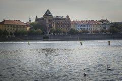 Vltava Fluss, Prag Stockfoto