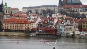Vltava i Praga kasztel zbiory wideo