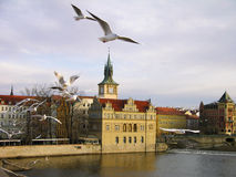 Vltava river embankment, Prague Stock Image
