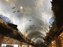 Vlucht aan hemel stock foto's