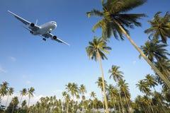 Vlucht aan paradijs Stock Fotografie