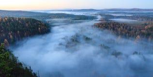 Vlucht over de herfstbos Stock Foto's