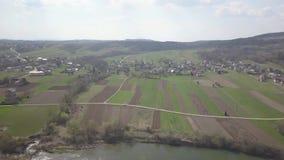 Vlucht over een groen de lentegebied met het toenemen korrel Landbouw Landbouwsector van de economie Cultuur van graangewassenins stock video