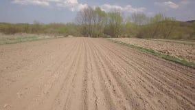 Vlucht over het vers gezaaide de lentegebied Landbouw Landbouwsector van de economie Cultuur van graangewasseninstallaties De len stock videobeelden