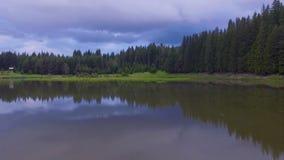 Vlucht over het water van een klein meer stock footage