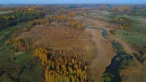 Vlucht over izborsko-Malskaya vallei, de herfst Het gebied van Pskov luchtvideo stock videobeelden