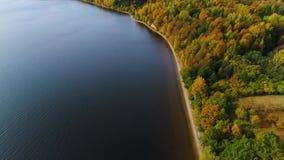 Vlucht over meer en bos bij de herfst stock videobeelden