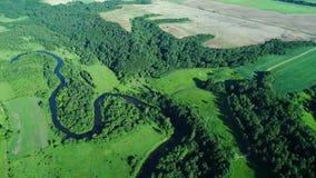 Vlucht over rivier in weiden stock video