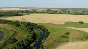 Vlucht over vlakte met rivier en vijver in de zomer in Rusland stock videobeelden