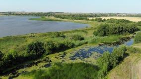 Vlucht over vlakte met rivier en vijver in Juli in Rusland stock video