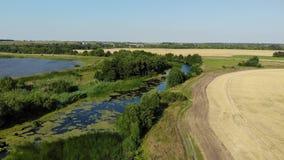Vlucht over vlakte met rivier en vijver in Juli in Rusland stock footage