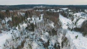 Vlucht tijdens de de winter bos heldere dag stock footage