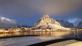 Vlucht van de hommel, Lofoten-Eilanden, Noorwegen stock footage