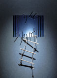 Vlucht van Gevangenis Royalty-vrije Stock Afbeelding