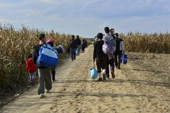 Vluchtelingen in Sid (de grens van Serviër - Croatina-) Stock Foto's