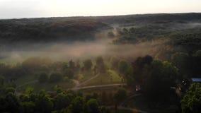 Vluchthommel boven het dichte bos stock video