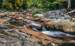Vlugge rivier in Autumn White Mountains, New Hampshire Stock Fotografie