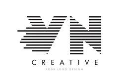 VN V N Zebra Letter Logo Design with Black and White Stripes Royalty Free Stock Photography