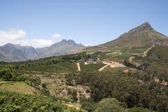 Vnes e montagne Stellenbosch Sudafrica immagine stock