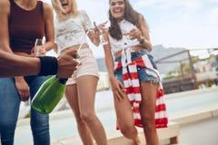 Vänner som tycker om drinkar under takpartiet Arkivfoton