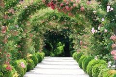 Voûte de Rose dans le jardin Photos libres de droits