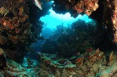 Voûte sous-marine de roche Photo stock