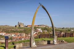 Voûte Whitby North Yorkshire R-U de fanon de baleine photos libres de droits