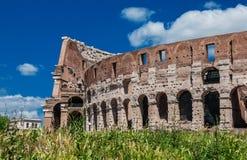 Voûtes de Colisé à Rome Photographie stock