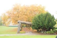 Voûte de bûcheron de Stanley Park Images stock