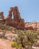 Voûte de druide, parc national de Canyonlands, UT Image libre de droits