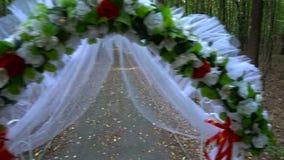 Voûte de mariage dans la forêt d'été banque de vidéos