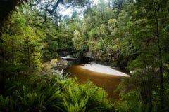 Voûte de porte de Moria, Nouvelle-Zélande Photographie stock libre de droits