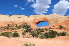 Voûte de Wilson, Utah images libres de droits