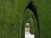 Voûtes de passage couvert ornemental d'arbustes images stock