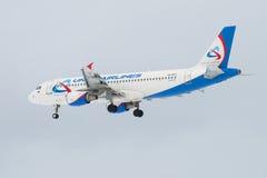 Voando o Airbus A320 VQ-BCZ do ` das linhas aéreas de Ural do ` da linha aérea no céu crepuscular Imagem de Stock Royalty Free