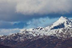 Voando o plano nas montanhas fotos de stock royalty free