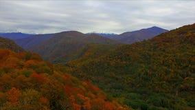 Voar sobre o outono de Cáucaso coloriu a floresta da montanha filme